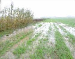 Bande ligneuse contre le ruissellement, photo RMT Biomasse