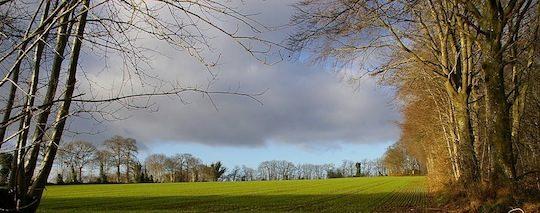 Bocage, photo  de la Chambre D'agriculture de Mayenne