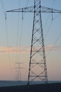 La biomasse constitue une base de production régulière d'électricité renouvelable, photo Frédéric Douard