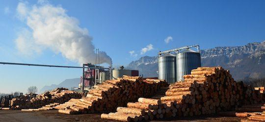 La centrale de cogénération Alpes Energie Bois utilise le Fire Cube depuis 2013, photo F Douard