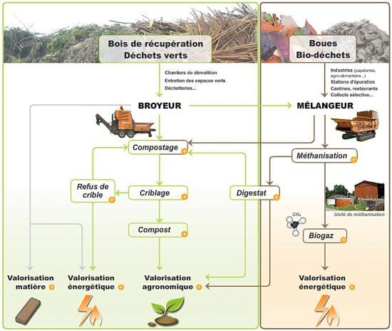 Champ d'activité de Noremat dans le domaine de la valorisation de la biomasse