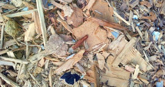 Déchets de bois pouvant être valorisés par gazéification, photo Cogébio