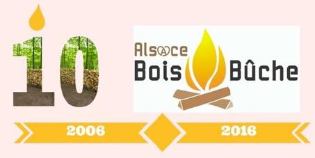 10 ans Alsace Bois Bûches