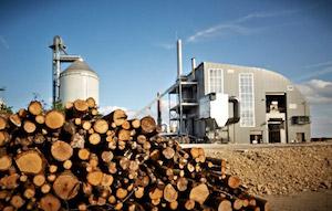 Vue de la centrale depuis le parc à bois, photo Carbonex