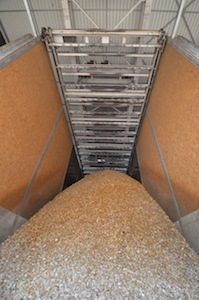 Détail d'une travée à herse du silo VECOPLAN de Nesle, photo Frédéric Douard