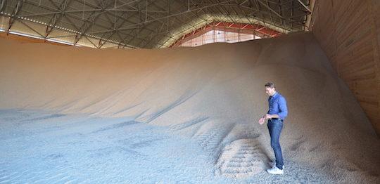L'un des deux hangars de stockage des granulés, avec au premier plan Michael Fridolfsson de PST, photo Frédéric Douard