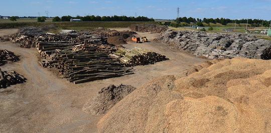 Le parc à bois de la plateforme biomasse de Nesle peut acceuillir 400 000 tonnes de bois, photo Frédéric Douard