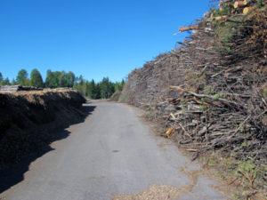 Le terminal bois-énergie de Hakevuori en Finlande