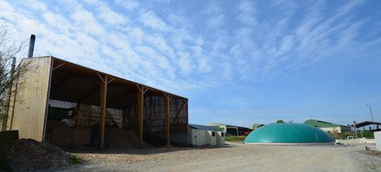 Transition énergétique, la biomasse doit être remise au premier plan en France