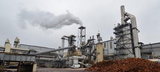 L'usine de panneaux de bois Kronospan à Sanen au Luxembourg, photo Frédéric Douard