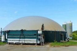 Séchage par chaleur issue d'une centrale de cogénération au biogaz chez EF Bois, photo ONF Energie