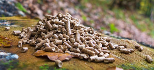 Wood Pellets France ~ Le parlement européen va t il suicider tout potentiel