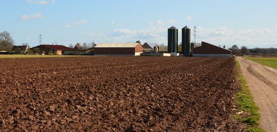 La ferme de l'Hirondelle à côté de l'unité de méthanisation Agrivalor à Ribeauvillé, photo Frédéric Douard