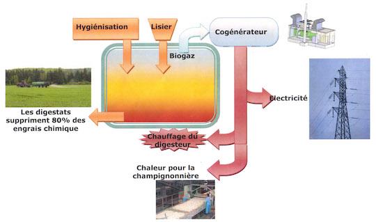 Schéma de principe des flux, crédit BioEnergie Touraine