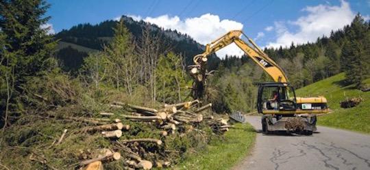Récolte de bois à Entlebuch, photo  Aide Suisse aux Montagnards
