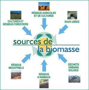 11 & 12 octobre 2018, produire de l'énergie à partir de déchets végétaux et forestiers