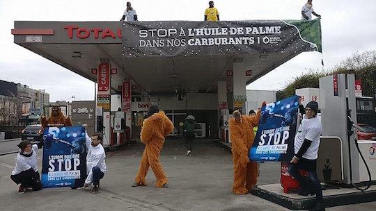 Les écologistes dépités avec l'arrivée du premier bateau d'huile de palme  à la raffinerie Total de La Mède