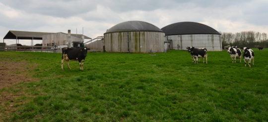 À Bellaing, la ferme du Panier de Quintine bâtit son avenir avec la méthanisation