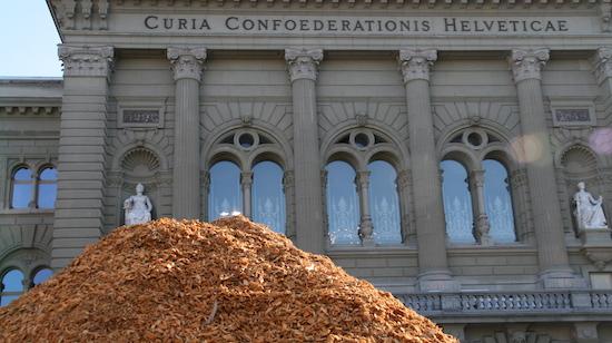 Energie-bois Suisse fête ses 40 ans
