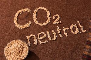 Le granulé de bois, solution polyvalente pour décarboner de l'énergie en Europe