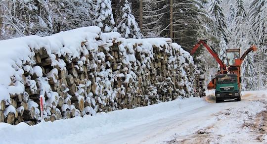 L'intérêt du bâchage papier des piles de bois-énergie en montagne