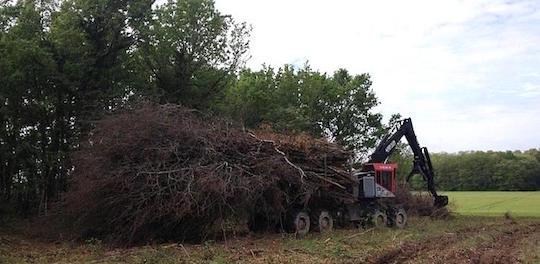 Avec CBQ+, Logistic Bois Energy garantit la qualité de ses plaquettes forestières