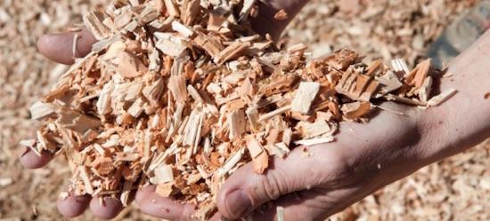 Forestener et Energ'Y Citoyennes inaugurent deux chaufferies bois en Isère