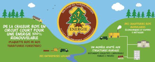 En Auvergne, Beta Energie  redonne vie aux territoires ruraux avec l'énergie bois