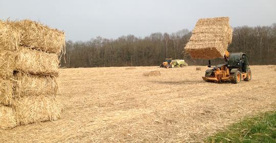 Substituer les combustibles fossiles par des biomasses agricoles