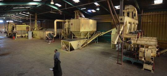 Pellets du Maroc, premier producteur de granulé de bois certifié DIN Plus en Afrique