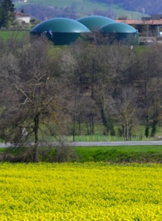 Quel cadre de durabilité pour la méthanisation agricole en France ?