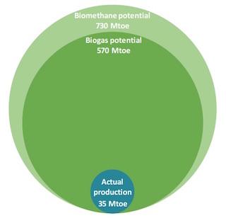 Le biogaz de biodéchets pourrait couvrir 20% de la demande mondiale de gaz