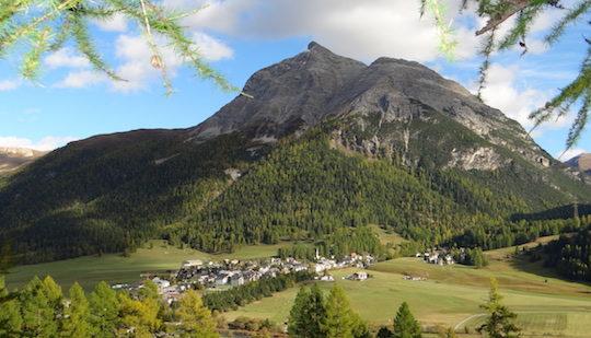 La transition énergétique en Suisse doit sérieusement accélérer avec le bois