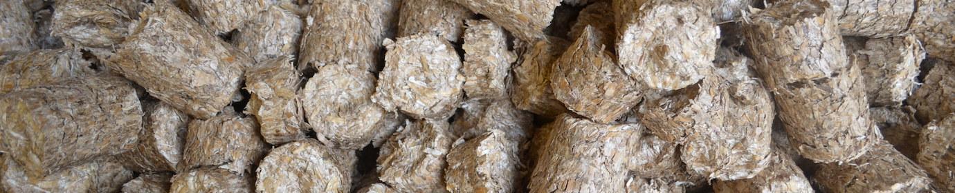 Mini-briquettes de miscanthus, photo Frédéric Douard