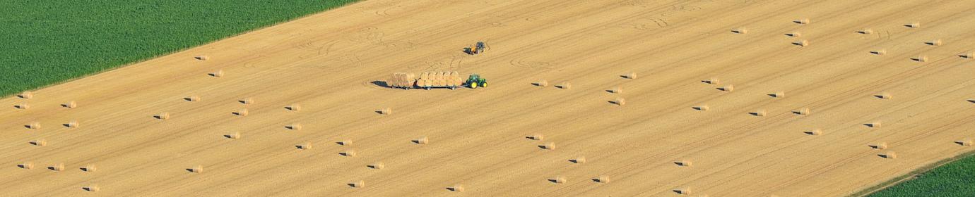 Récolte de paille, photo Frédéric Douard