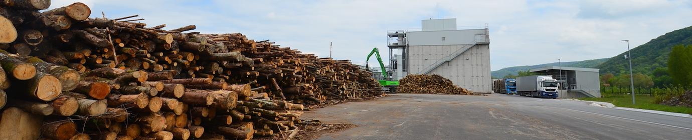 Parc à bois de la centrale biomasse de Novillars, photo Frédéric Douard