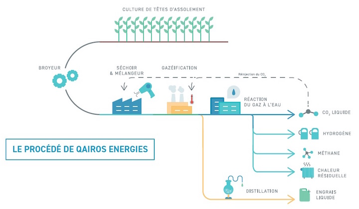 Du chanvre dans la Sarthe pour produire un hydrogène renouvelable et vraiment vert !