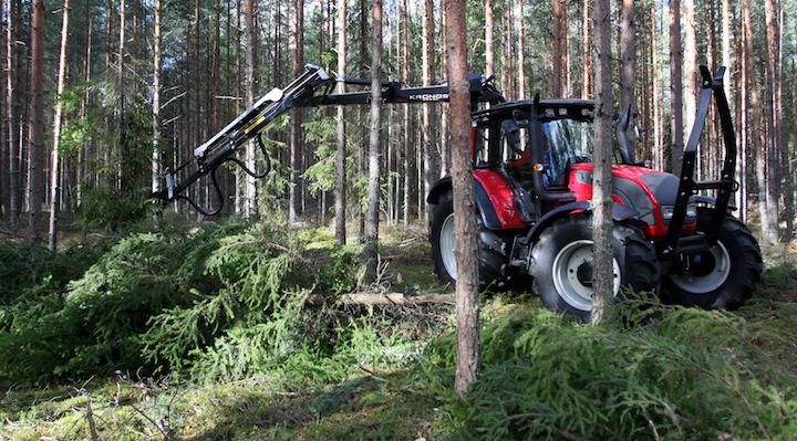 Pourquoi il faut couper durablement les forêts pour stabiliser le climat