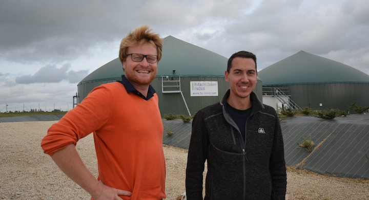 Du maïs-ensilage en CIVE d'été pour produire du biométhane