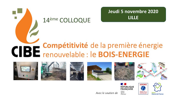 5 novembre 2020 à Lille : colloque du CIBE sur la compétitivité du bois-énergie