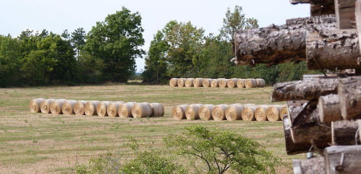Bâtir un approvisionnement biomasse avec les big data d'OpenForêt