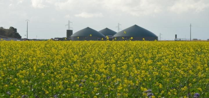 Magma Energy®, première centrale d'achats pour les producteurs de biométhane