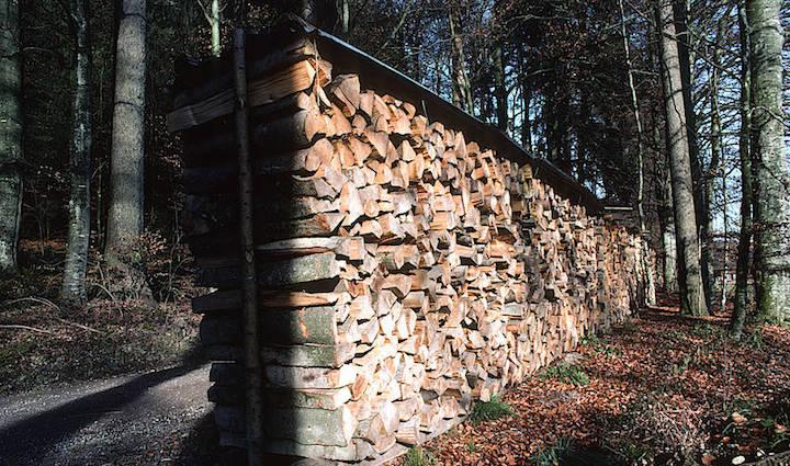 En Suisse, le bois-énergie est à la fois source d'emplois et de gestion durable des forêts