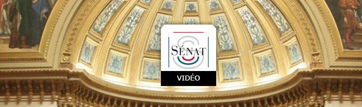 30 mars 2021 en ligne, table ronde publique au Sénat sur la méthanisation