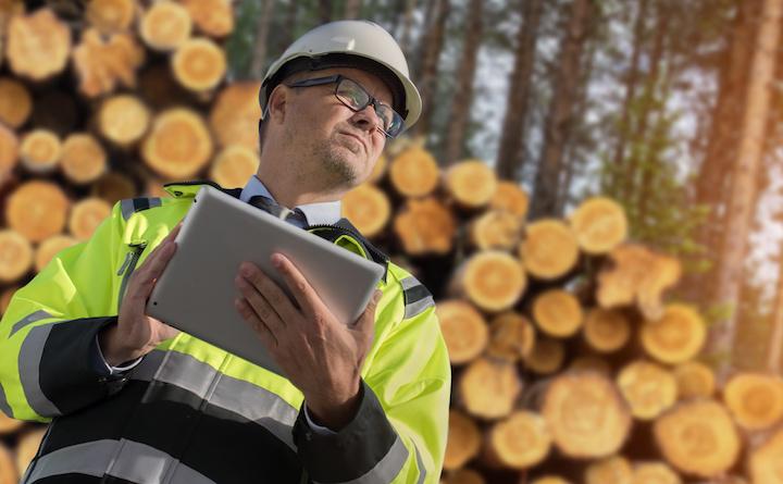SURE, certification de durabilité des bioénergies au regard de la directive énergies renouvelables