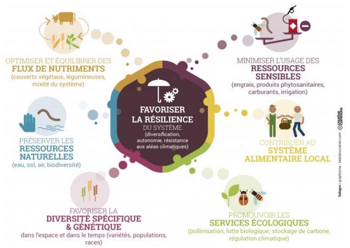 La méthanisation dans le mix énergétique français : enjeux, impacts et propositions